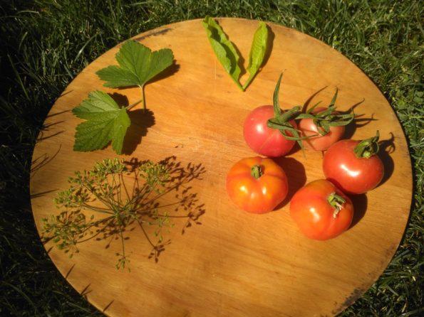 Ингредиенты для соленых помидор